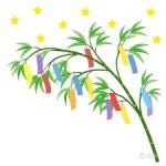 笹の葉サラサラ~♪